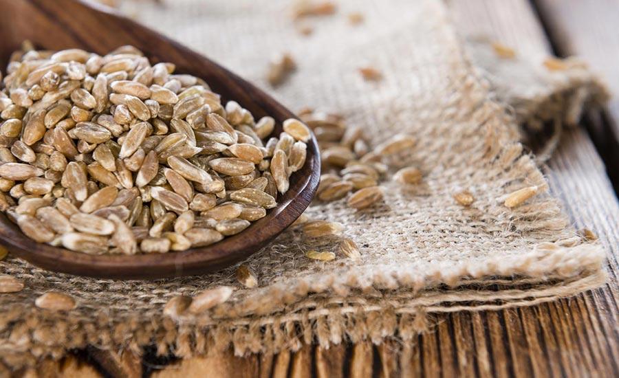 Farro Cosa Cereale Fa Bene Pane