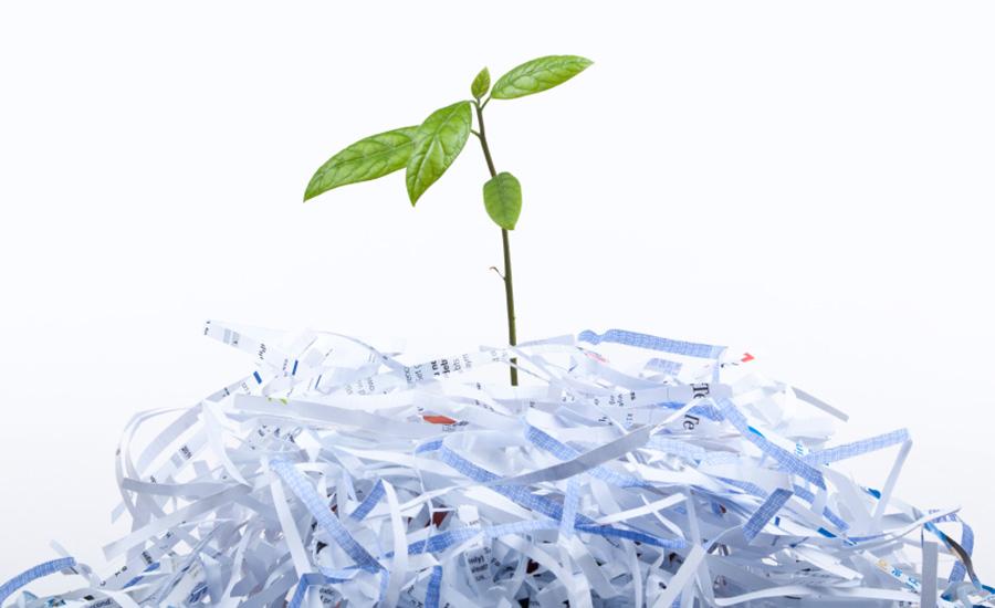 Imballaggi Packaging Ecologici Carta Plastica Riciclabili